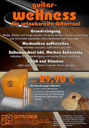 Wellness-Flyer 2015-1